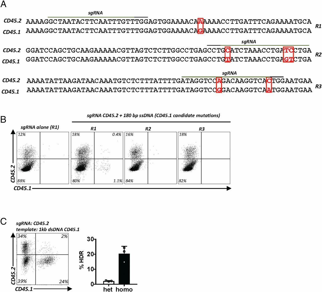 Highly Efficient and Versatile Plasmid-Based Gene Editing in Primary on