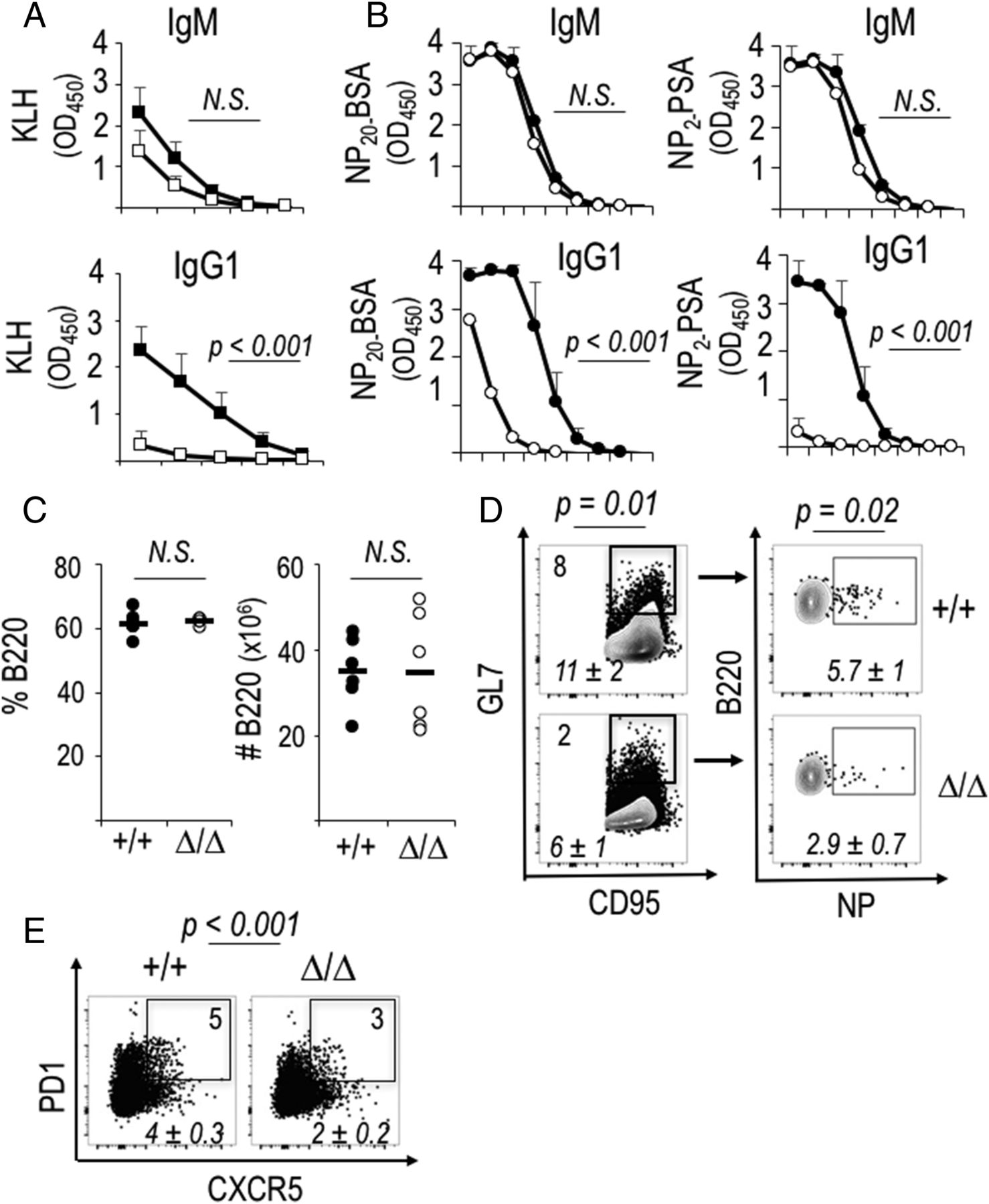 B Cell–Intrinsic mTORC1 Promotes Germinal Center–Defining
