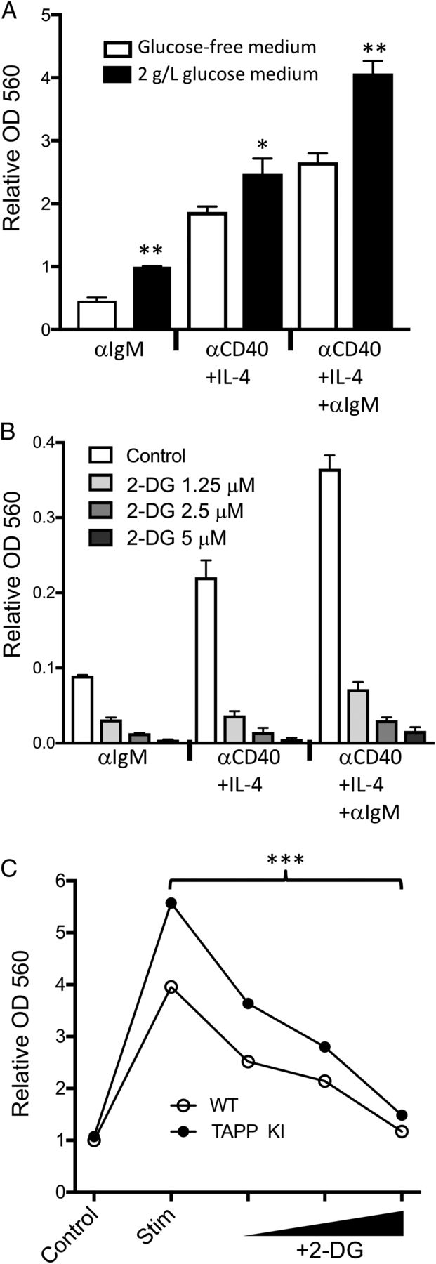 Tapp Adaptors Control B Cell Metabolism By Modulating The J 4020 24 Volt Wiring Download Figure
