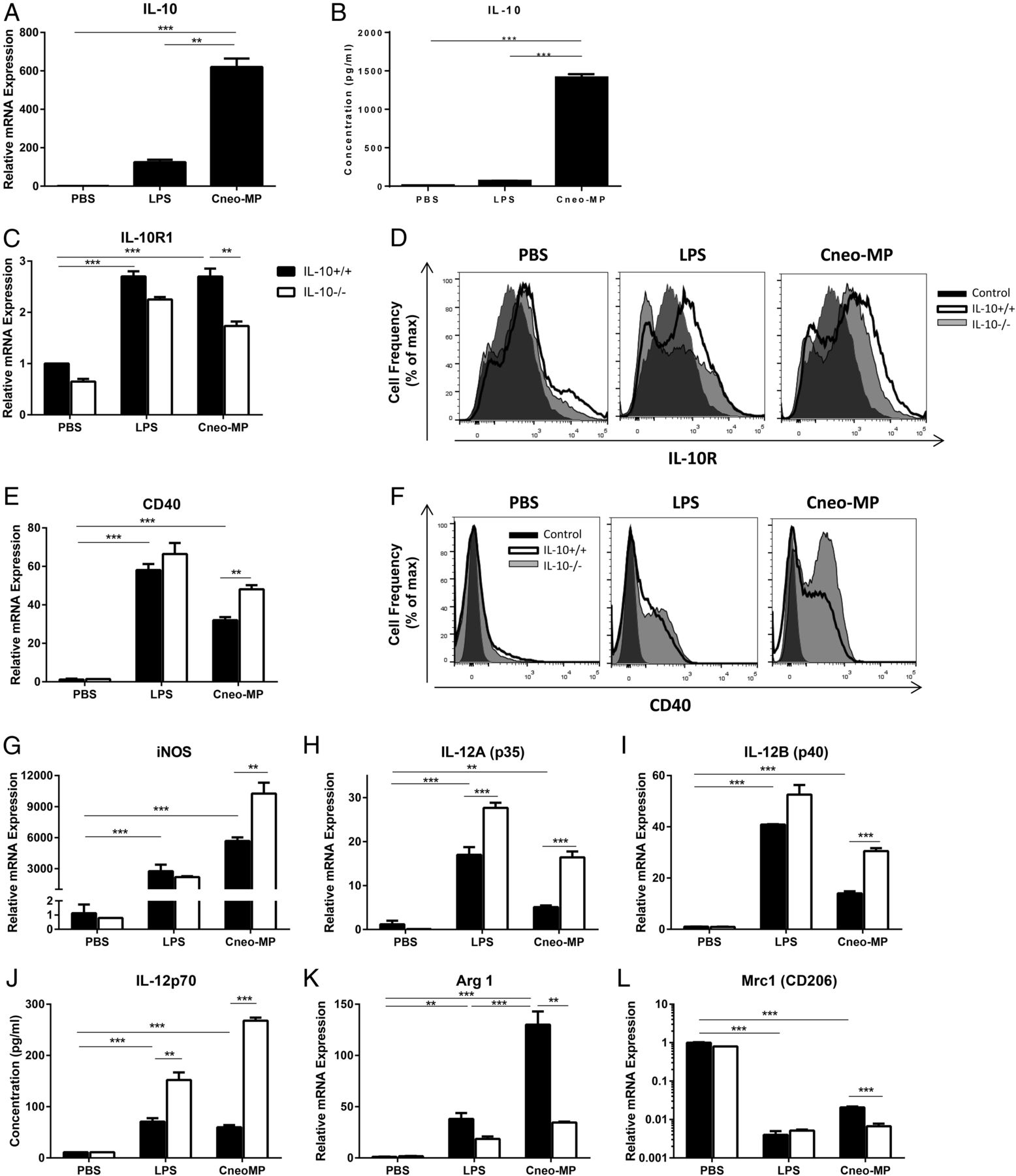Autocrine IL-10 Signaling Promotes Dendritic Cell Type-2