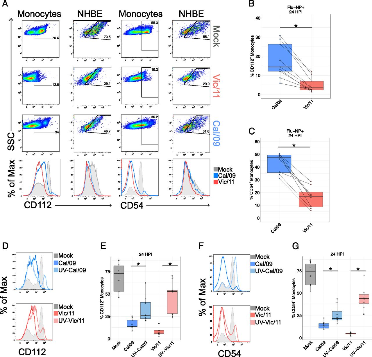 Differential Induction of IFN-α and Modulation of CD112 and CD54