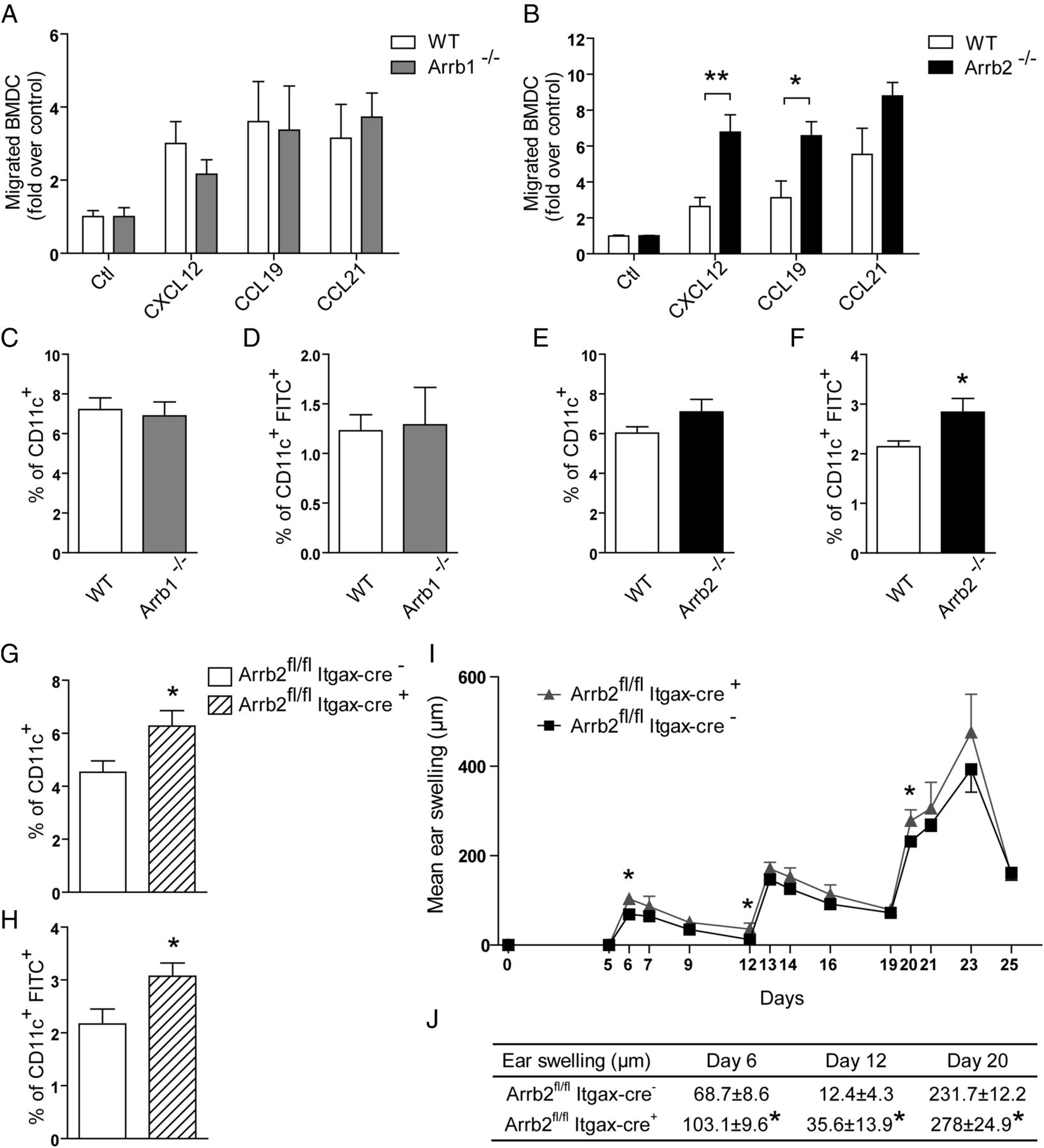 Deficiency of β-Arrestin 2 in Dendritic Cells Contributes to