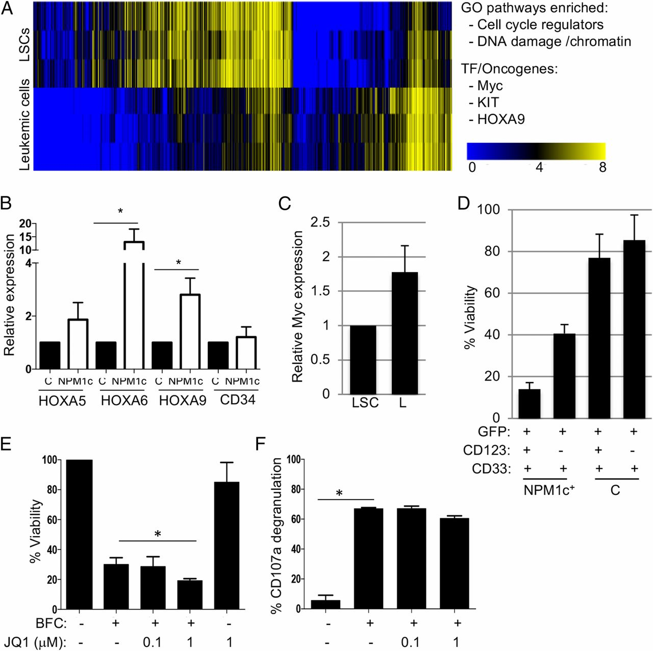 Induction and Therapeutic Targeting of Human NPM1c+ Myeloid