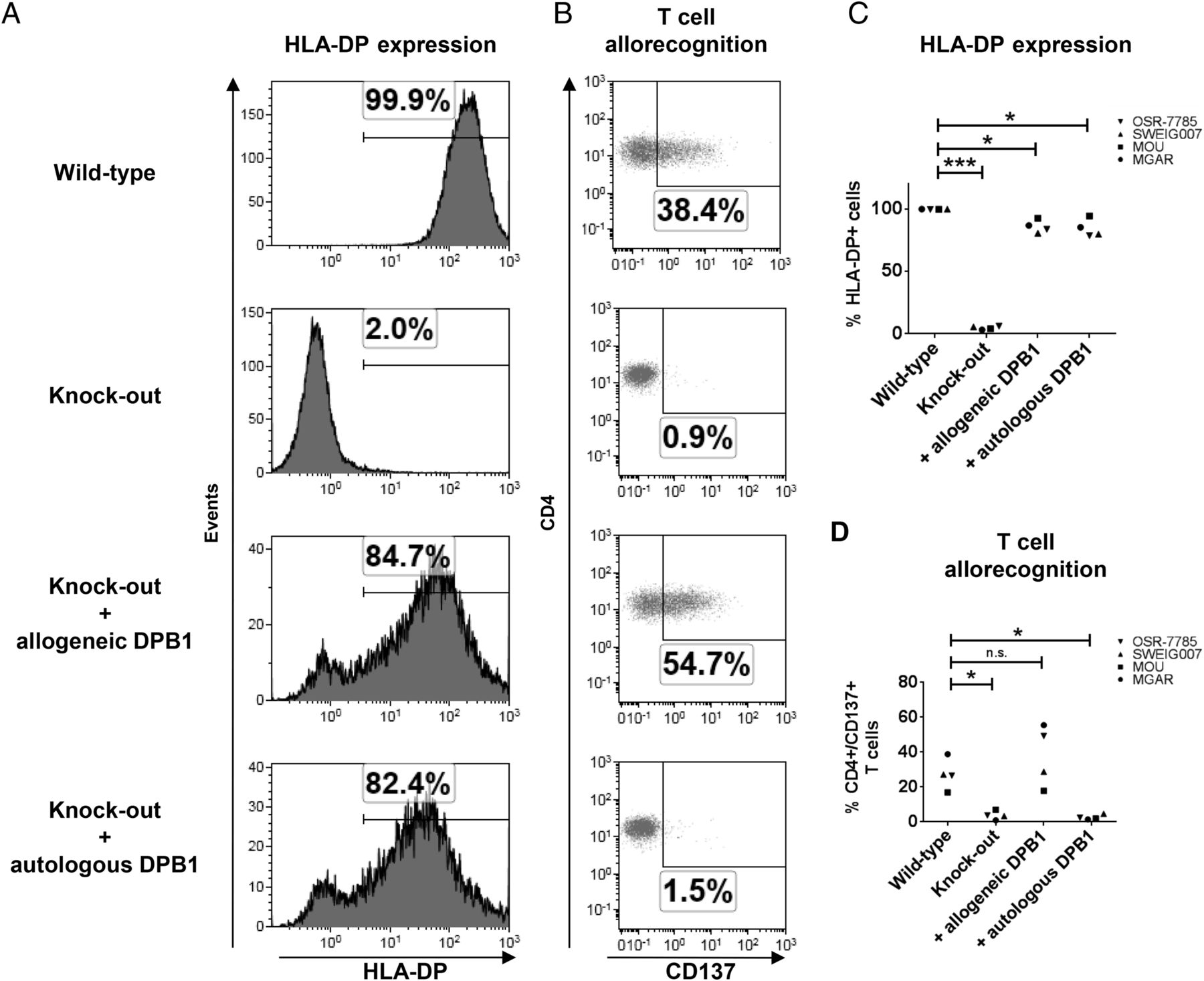 Multiple Knockout of Classical HLA Class II β-Chains by CRISPR/Cas9