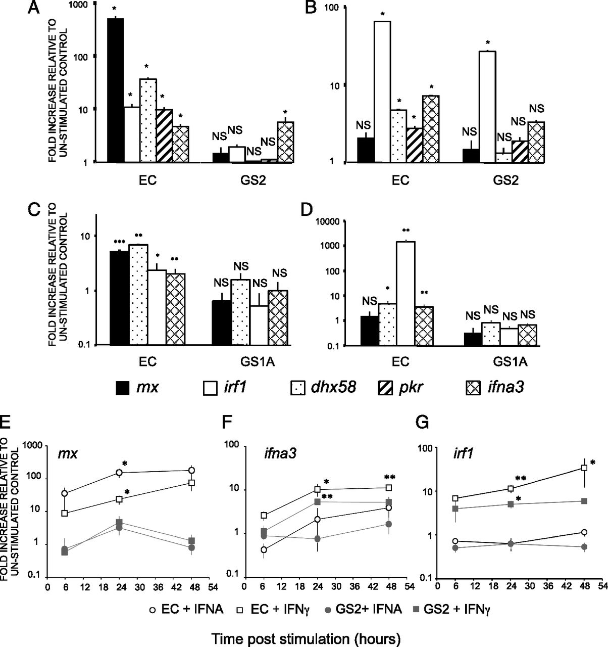 Viral Resistance and IFN Signaling in STAT2 Knockout Fish
