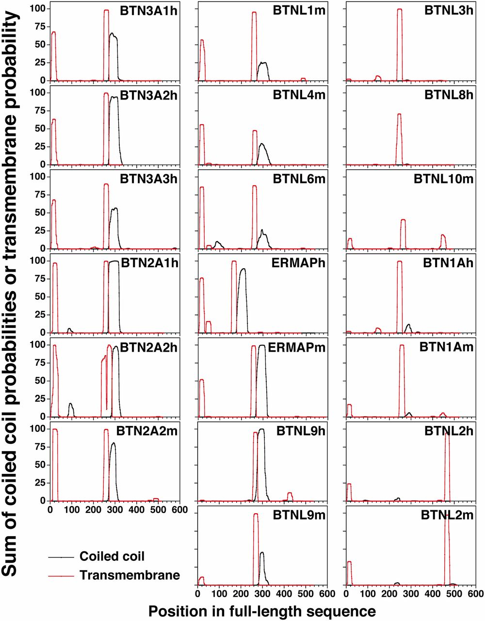 Critical Roles for Coiled-Coil Dimers of Butyrophilin 3A1 in the