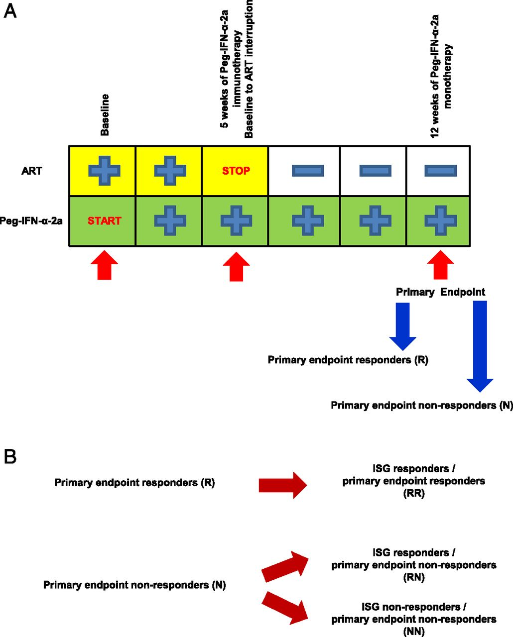 NK Response Correlates with HIV Decrease in Pegylated IFN-α2a