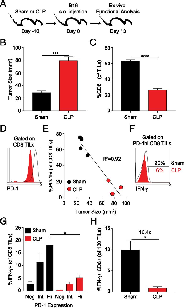 Sepsis-Induced State of Immunoparalysis Is Defined by Diminished CD8