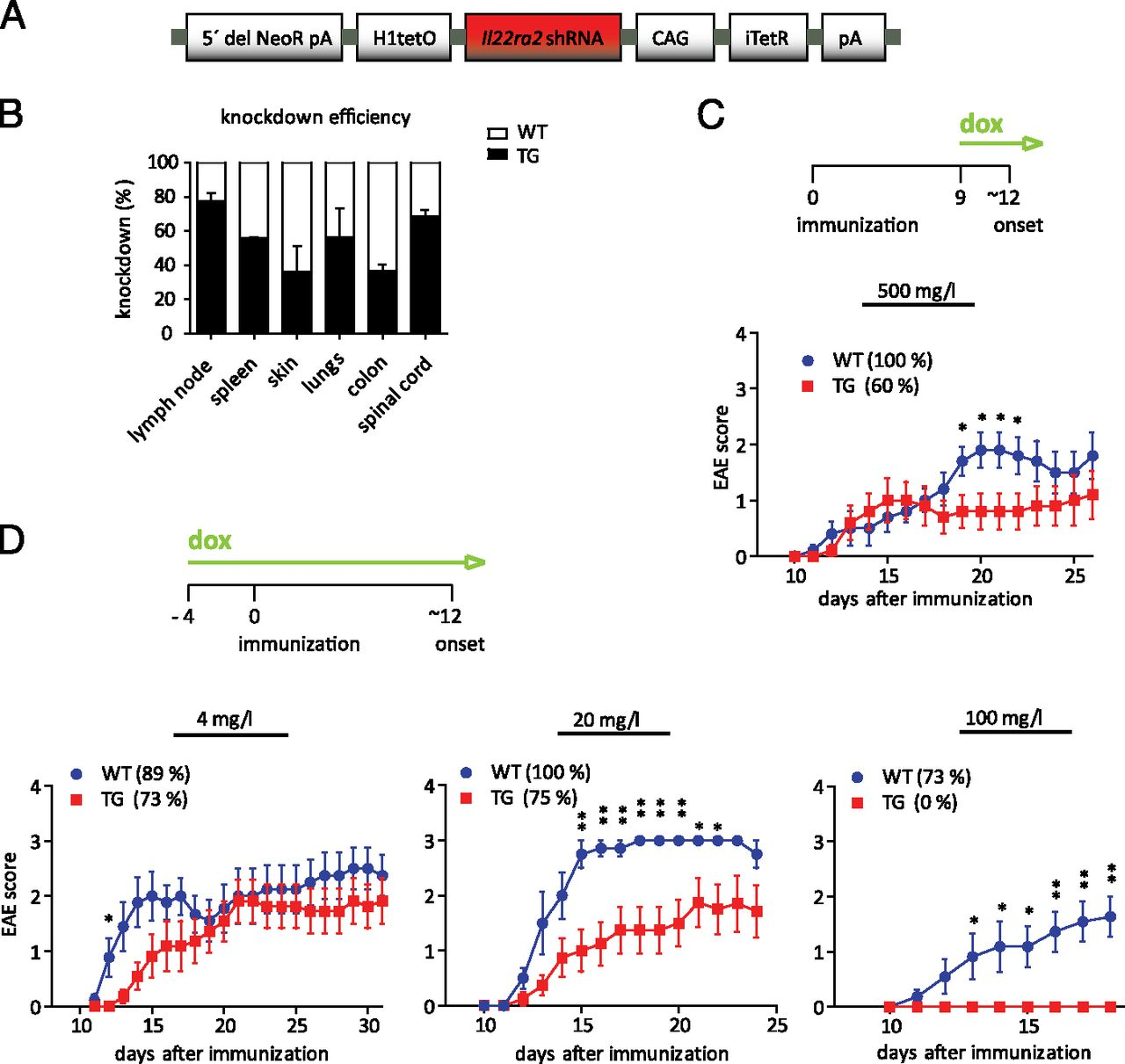 IL-22 Binding Protein Promotes the Disease Process in