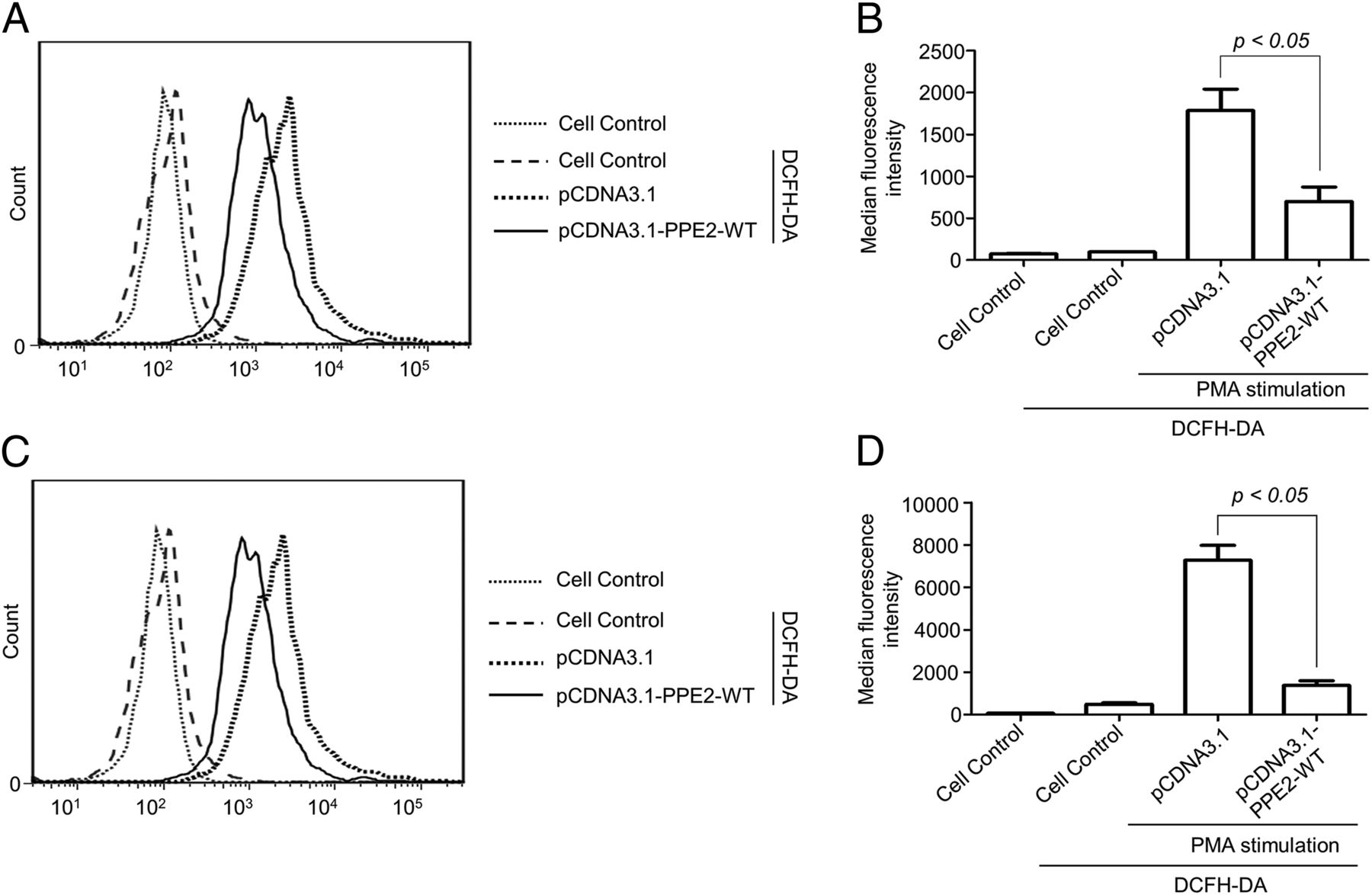 Mycobacterium tuberculosis PPE2 Protein Interacts with