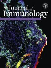 The Journal of Immunology: 196 (12)
