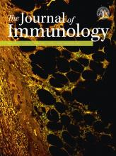 The Journal of Immunology: 197 (3)