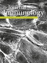 The Journal of Immunology: 198 (12)